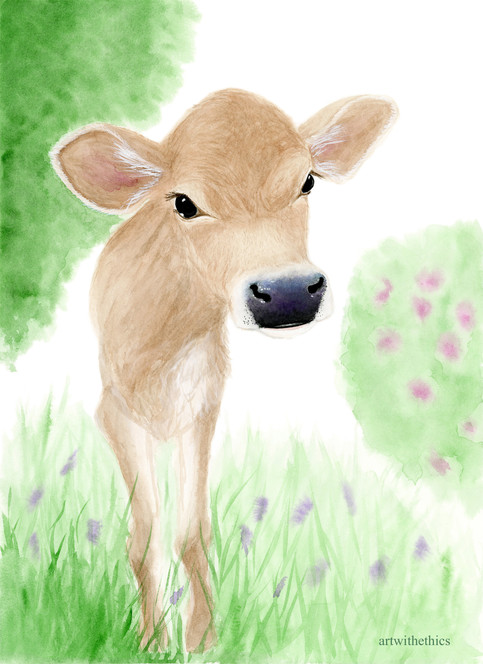 Shy Inquisitive Calf in Watercolour