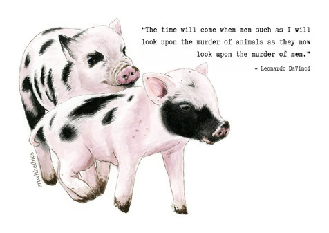 Playful Piglets with DaVinci Quote