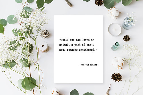 Anatole France Quote Poster, Animal Rights Quote, Vegan Wall Art, Vegan Decor