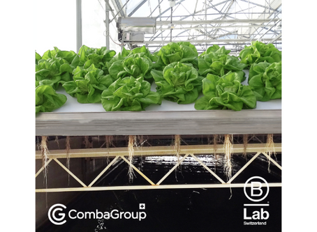 [EN]CombaGroup SA, world leader in automated mobile aeroponics, commits to B Corp rigorous standards