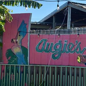 Lizard Tail & Augie's Sunset Café Ride