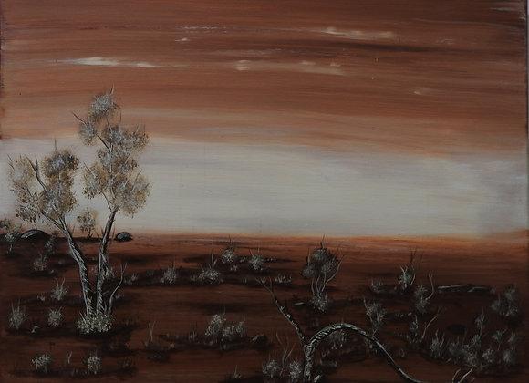 """CH 020 """"Bardi Dreaming II"""" - Craig Hajinoor, Broome"""