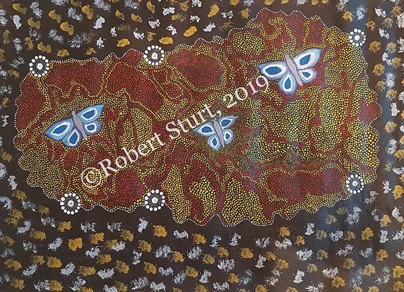 """My Grandmother's Dreamings with Butterflies"" ~ Robert Sturt, Balgo"