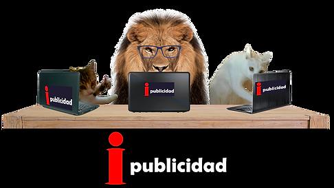 Gatos Chambeando3.png