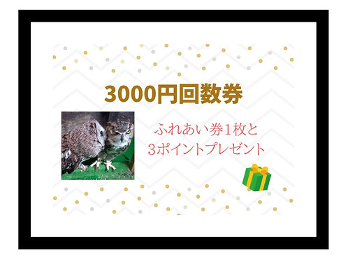 プレゼント出来るお得な回数券3000円分✨