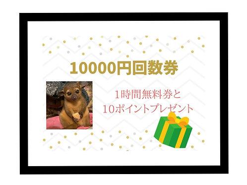 プレゼント出来るお得な回数券10000円分✨