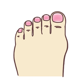 Toes - normal.png