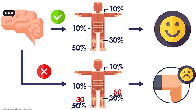 Musculoskeletal condition development-01