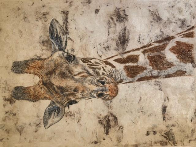 Giraffe by Lynne Thomas