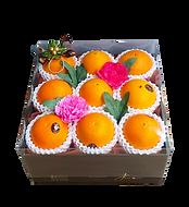 ส้ม-990-ดอกไม้.png
