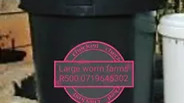 Large Organic Worm Farm - 1 000 Worms