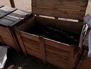 comm worm farm.jpg