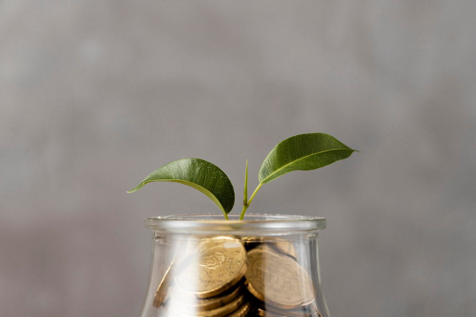 front-view-plant-growing-from-jar-coins