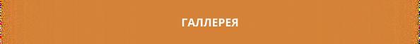 Заголовок (1).png
