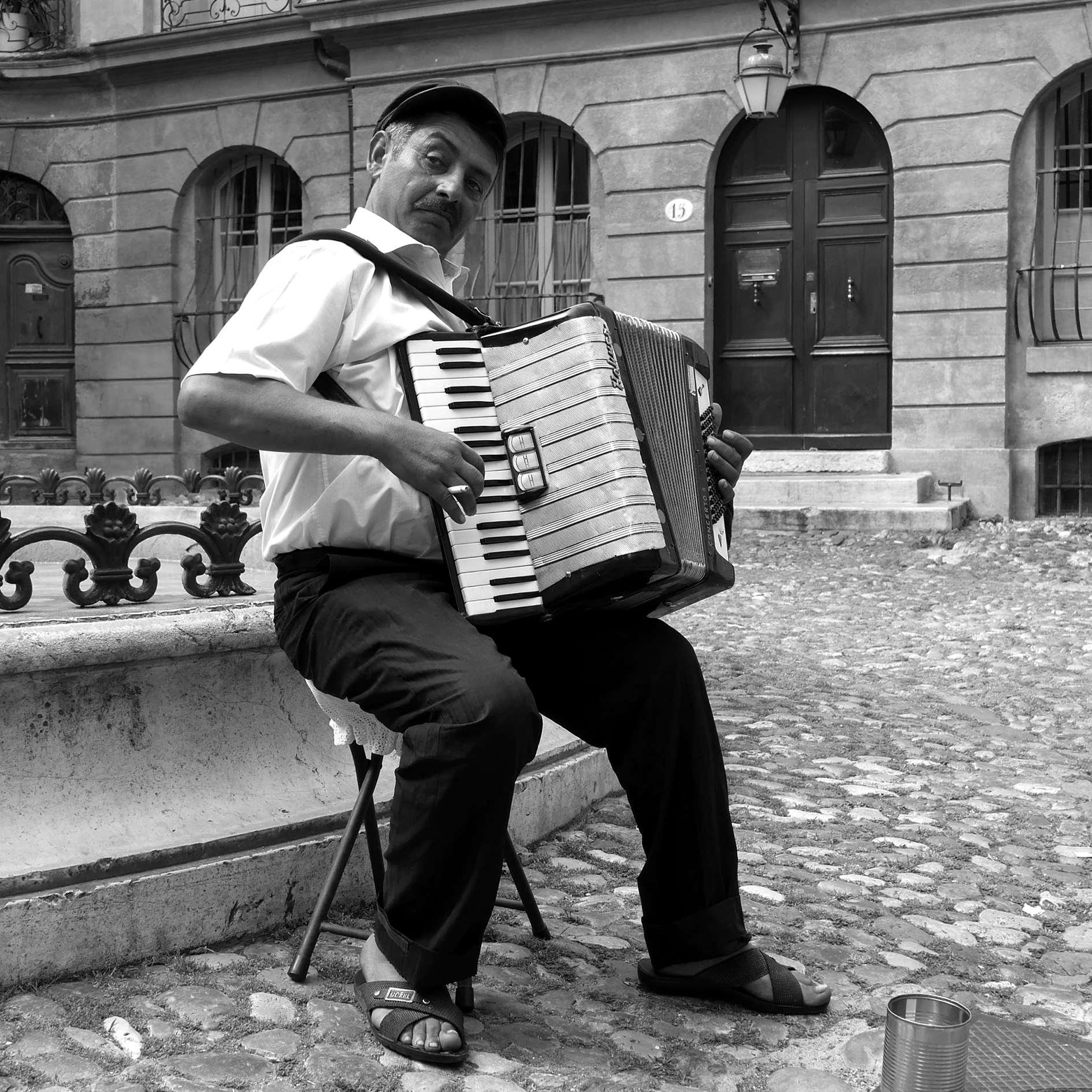 l'accordéoniste