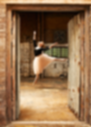 Ballet, Dance, Sports, Photographer, Lifestyle photographer, aDvertising photographer, Advertisement, Fashion, Stop Motion, Freeze, Pittsburgh, New York