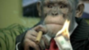 monkeymoney.jpg