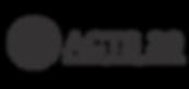 A29 Logo.png
