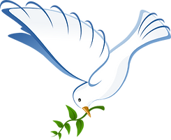 white-dove-hi.png