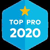top pro 2020 badge