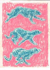 bluedogrun.jpg