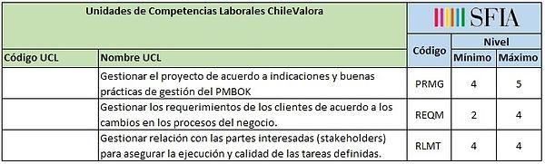 Perfil_Líder_de_proyectos_de_desarrollo_