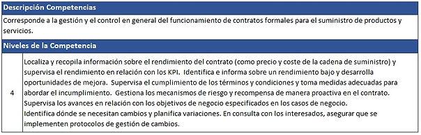 Vendedor_de_Servicios_Tecnológicos_ITCM.