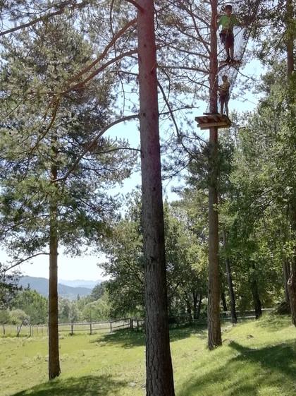Bosc i Pastura Estiula Aventura