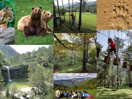 Nou Blog i nova etapa com Agència de Viatges!