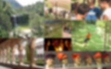 PAQUET_COLÒNIES_3_DIES.jpg