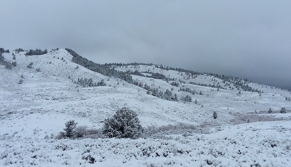 Snowy views near small remote town of Dubois, Wyoming