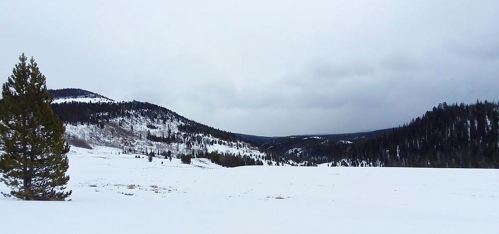 Union Pass area near Dubois, Wyoming
