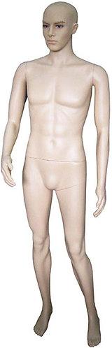 Male Mannequin 人體模型(男)