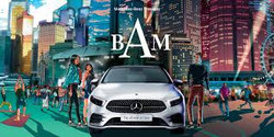 The Mercedes-Benz BAM Festival