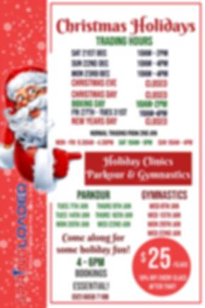 Christmas Holidays (2).jpg