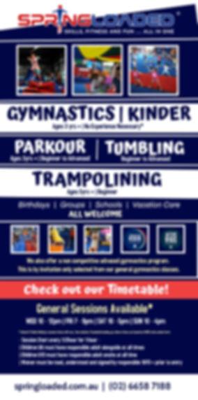 Copy of Copy of gymnastic1.jpg