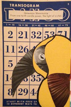 ADVENTURES OF YELLOW BIRD & FISH EYE
