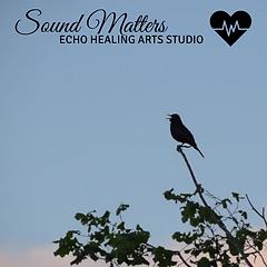 Sound Matters w bird song echo.png
