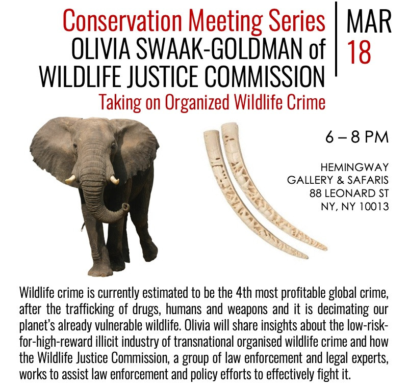 Conservation Meeting Series: OLIVIA SWAAK-GOLDMAN of Wildlife Justice Commission - March 18, 2020