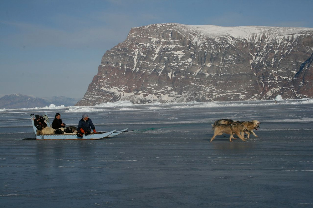 Dogs pulling a sled over ice in Greenland