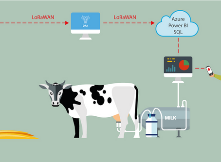 Dairy Farm Increases Milk Production by 18% with IoT and Machine Learning