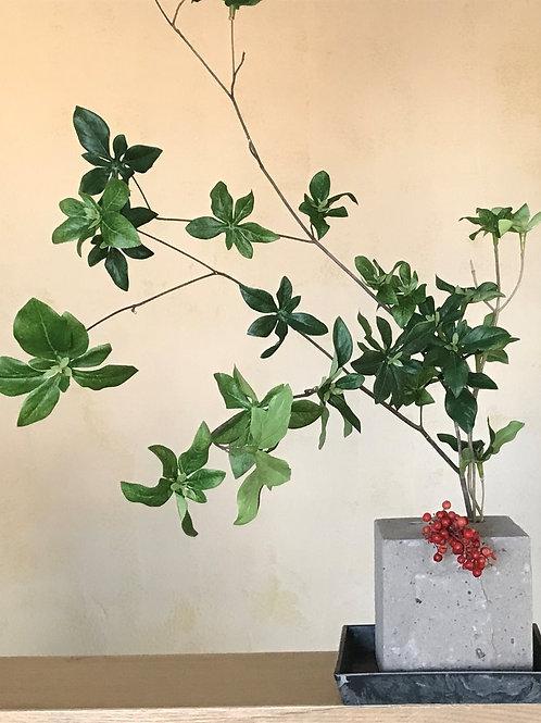 インテリアグリーンB 石の花器付き