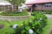 taman bunga.jpg