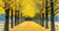 tour_img-1056755-148.jpg
