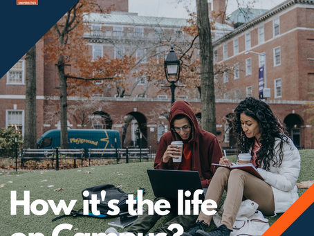 WHAT IS LIFE ON A COLLEGE CAMPUS LIKE?