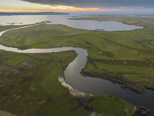 Szczecin Lagoon Eco Island - Poland