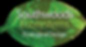 SWES Logo2.png