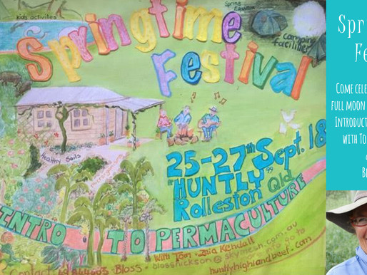 Springtime Festival & Introduction to Permaculture with Tom & Zaia Kendall
