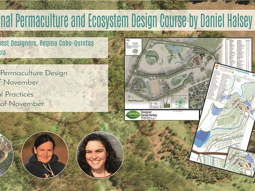 Advanced Permaculture and Ecosystem Design course by Daniel Halsey