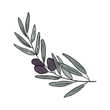olive branch-01.png